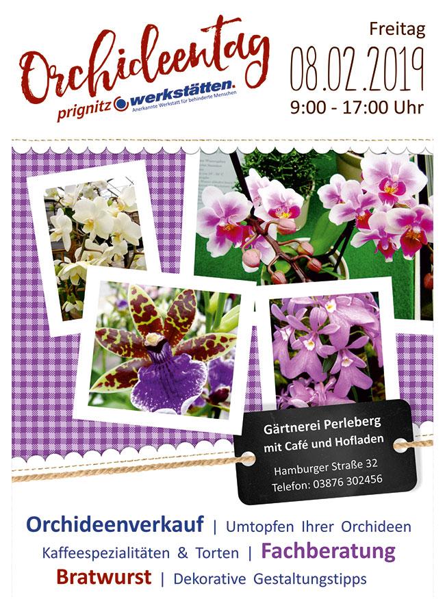 orchideentag2019