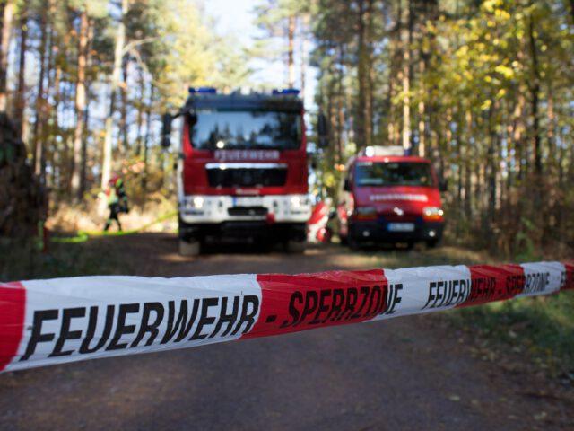 Feuerwehr, Waldbrand